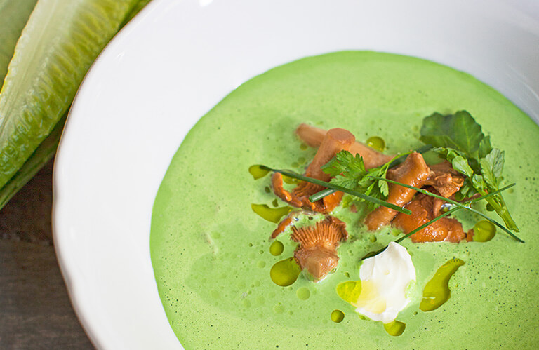 Salatsuppe mit marinierten Pfifferlingen