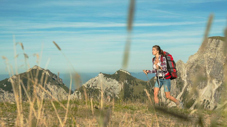 Das ultimative Workout: Nordic Walking