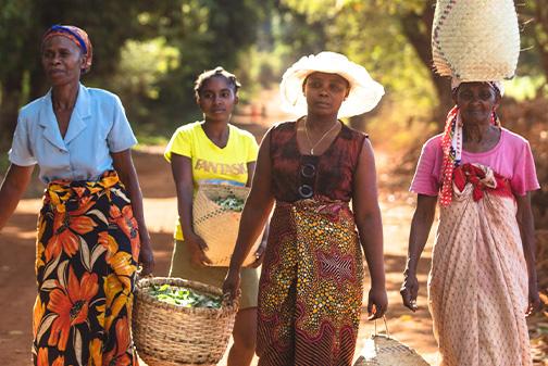 Frauen in Madagascar, die einen Korb tragen