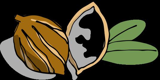 Zeichnung Baume Corps Super Hydratant Sheabutter